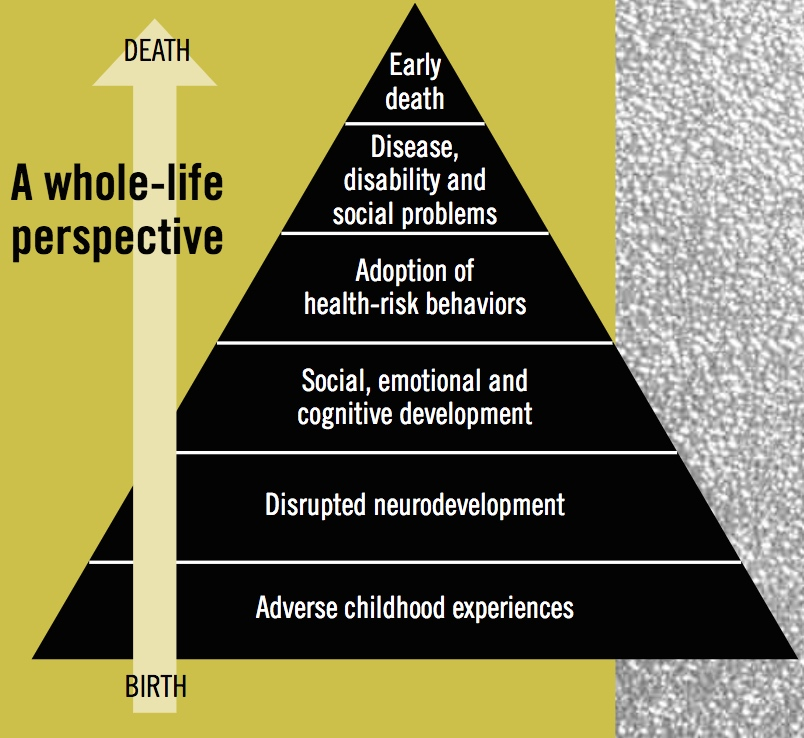 birth to death - a whole-life perspective on aces