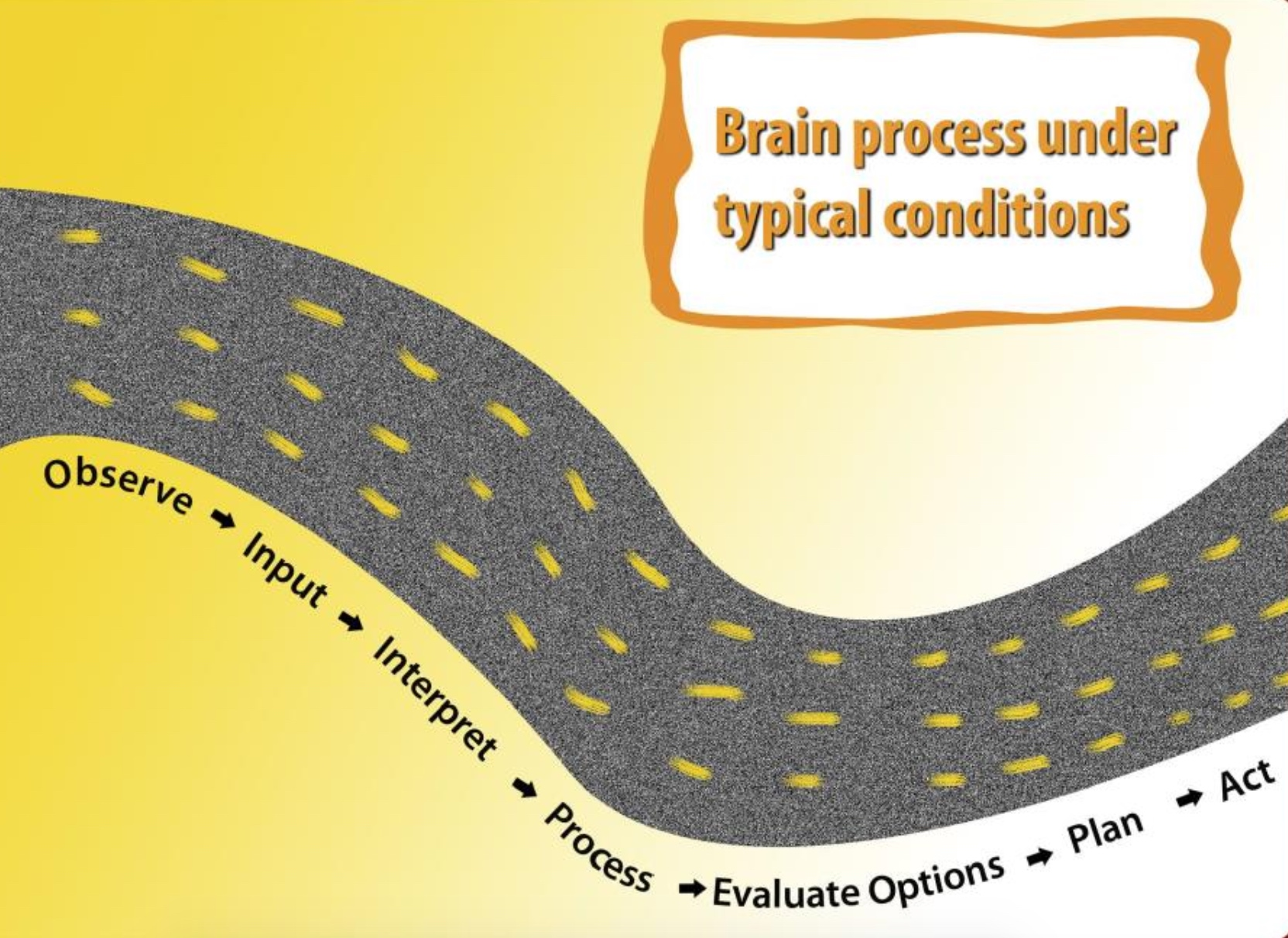 brain process under typical conditions